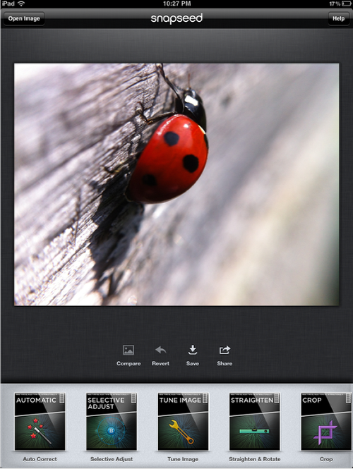 iPhone Photography Tutorial - How To Create An Awesome Macro Ladybird Image - TheAppWhisperer