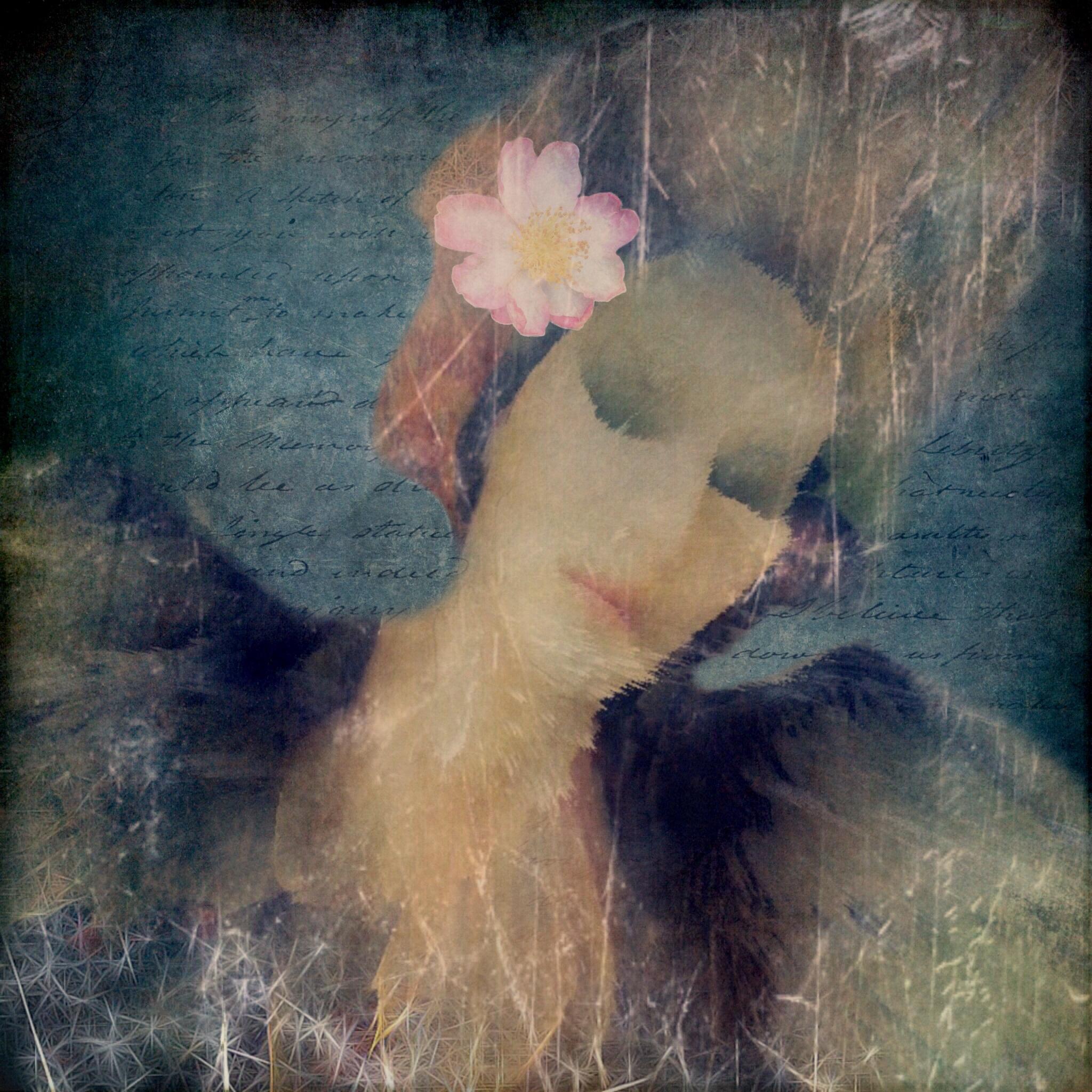 Lorenka Campos