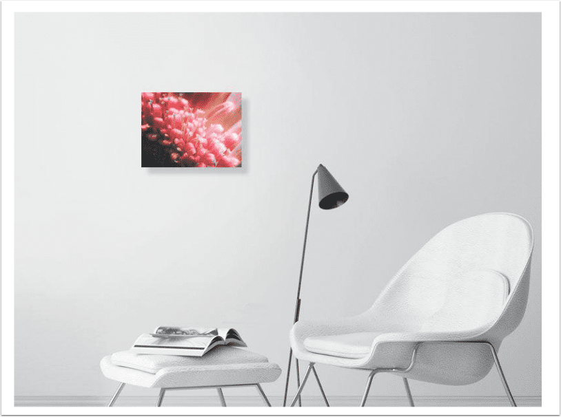 Print Sale Focus – 'In The Garden' with Jill Lian