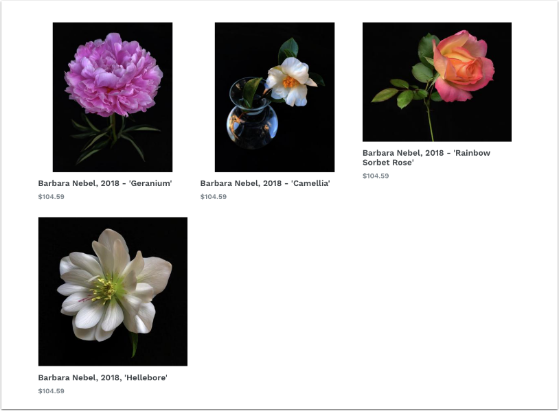 25% Discount Available in our Online Gallery Print Sales with Barbara Nebel's Collection -only until Sunday April 29th