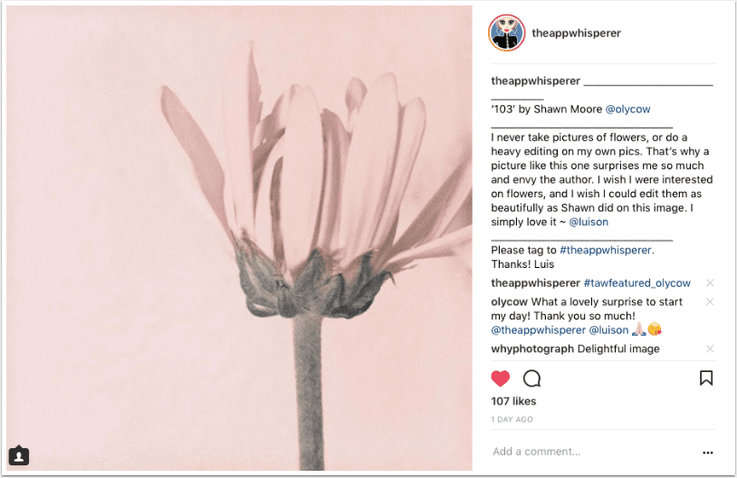 Mobile Photography – Instagram TAKEOVER with @luison – Days 8 to 10