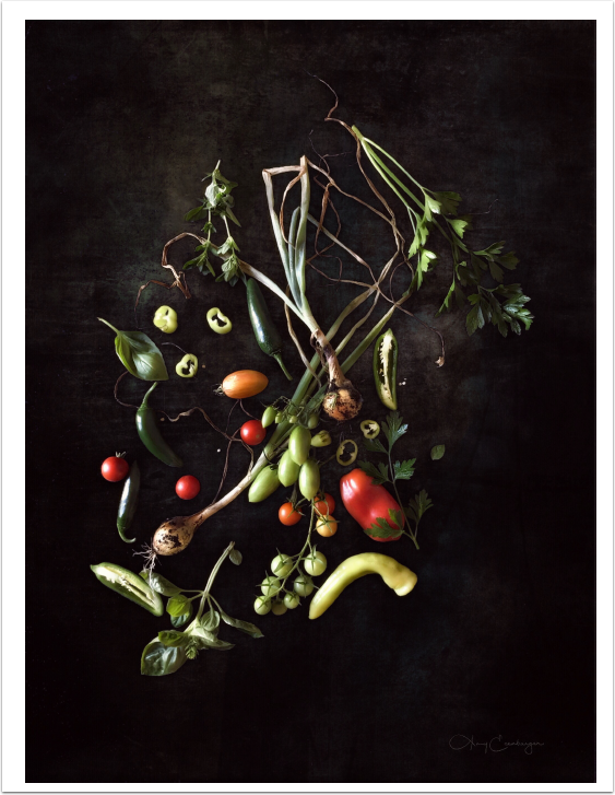 Mobile & Photography & Art – Beet Around The Bush – Our Second Interview with Amy Ecenbarger from Indiana, United States