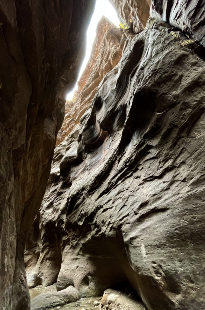 The canyon is over 1000 feet tall at places, yet very narrow. I think it is safe to say this is an extreme vertical and super hard to capture, so I used the Ultra Wide lens in Pano mode to shoot a vertical panorama, allowing me to capture this scene in a perspective I simply couldn't on other platforms.